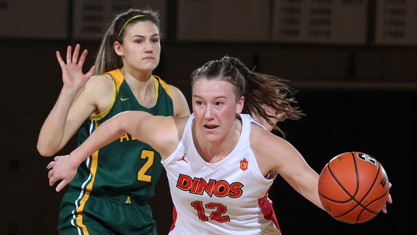 Image result for calgary dinos womens basketball